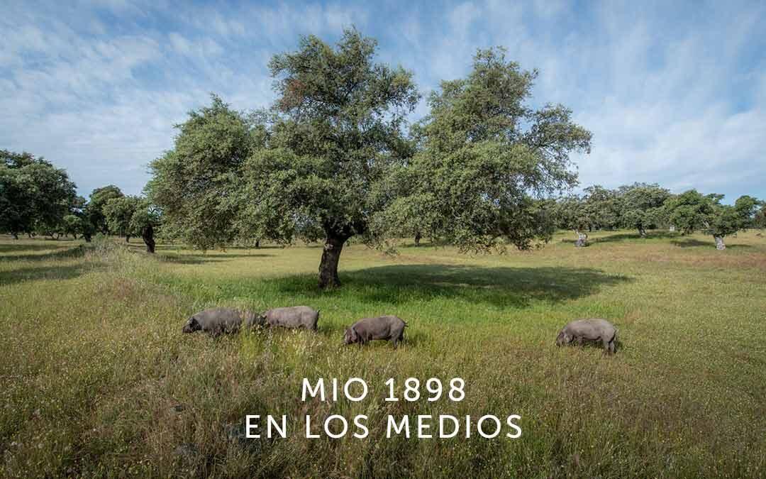 MIO1898 es bienestar, innovación y autenticidad