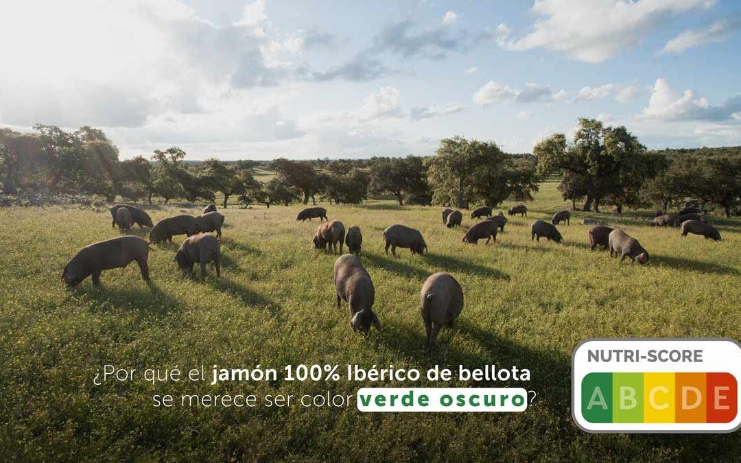 ¿Por qué el jamón 100% Ibérico de bellota se merece ser color verde oscuro?